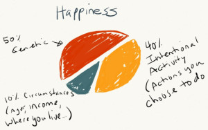 Optimism:happiness pie chart